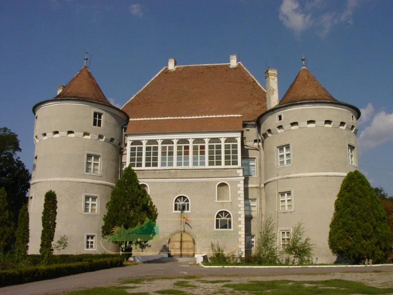 Castelul Bethlen-Haller, Cetatea de Balta